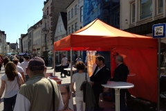 wahlstand-07-05-2016-holm-003