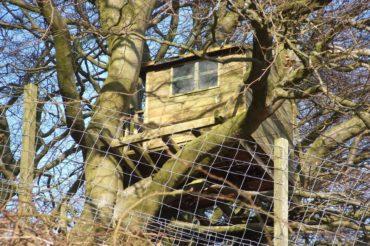 Vorfälle am Flensburger Bahnhofswald sind unwürdig